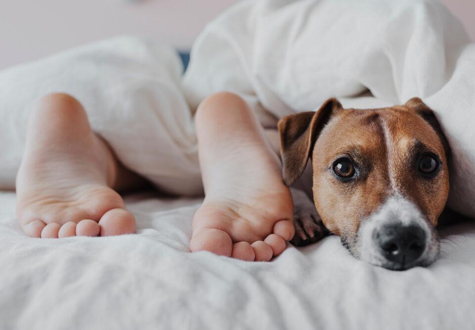 Dormir com os pés para fora da cama melhora o sono?